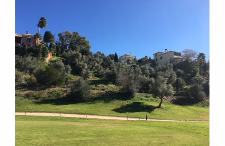 Frontline Golf Plot In Mijas - 1 - homeandhelp.com