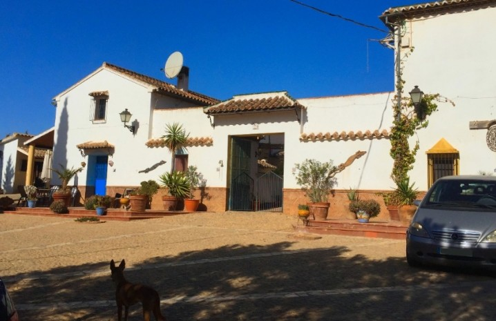 Spanish Cortijo In Antequera - 14 - homeandhelp.com