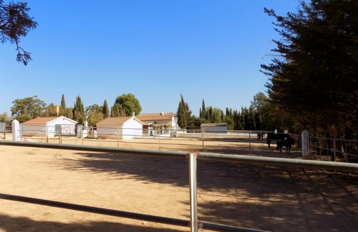 Spanish Cortijo In Antequera - 23 - homeandhelp.com